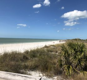Top Family-Friendly Beaches in Florida