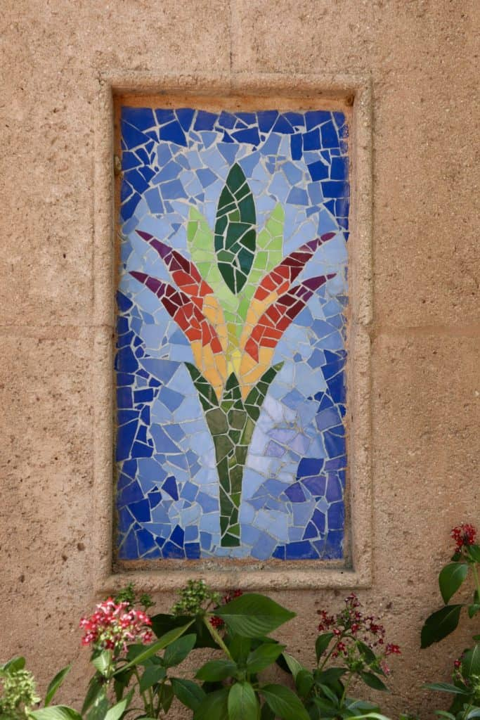 Bromeliad in Tile